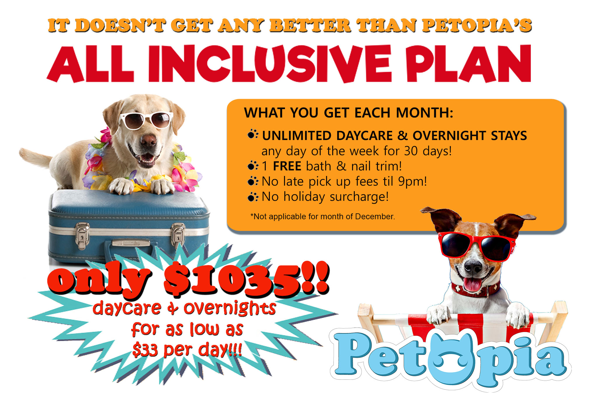 Petopia - Toronto's Best Dog Daycare and Overnight Care