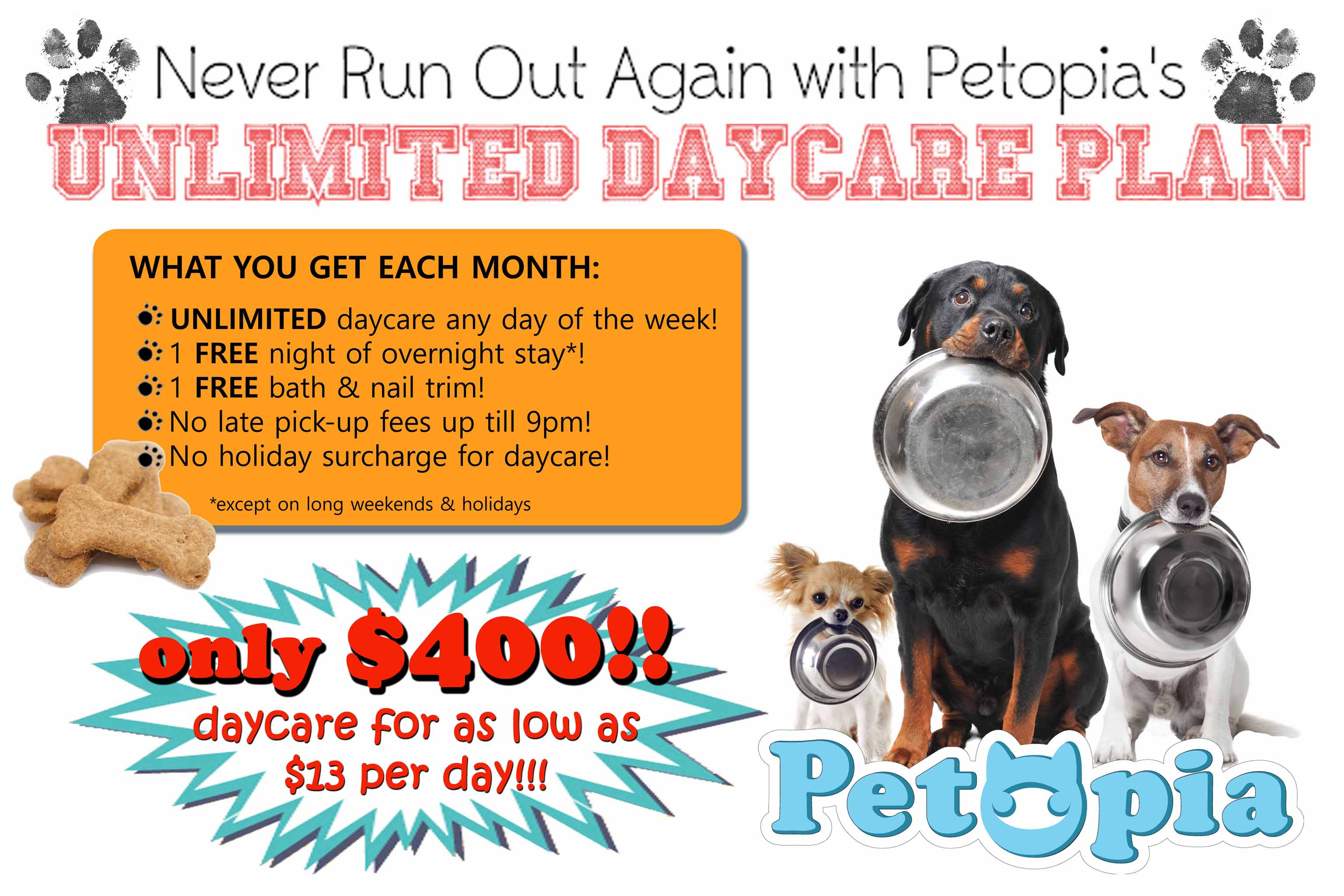 toronto s best dog daycare and overnight care unlimitedadsept2016